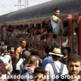 """Autor: Peter Iskenderov Srbské úřady přislíbily, že do konce srpna vypracují """"operativní plán"""" řešení problému přistěhovalců, kteří se neustále valí na území země, a také do sousedních států Srbska. Podle […]"""